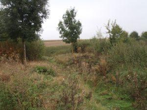 OrientierendeUntersuchung_Aichach 2 - Exploratory Analysis 2- boden & grundwasser - soil & groundwater